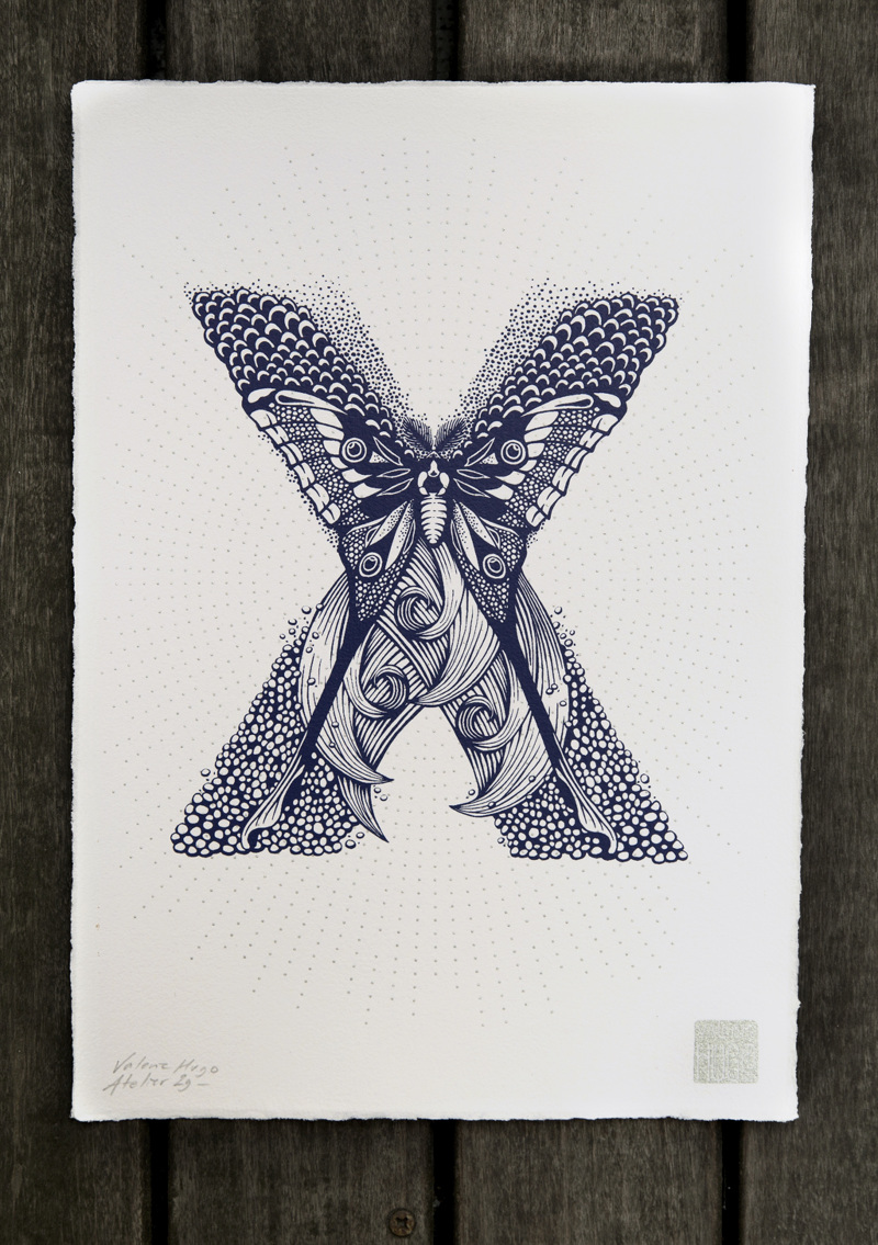 Alfabeto inspirado en la naturaleza - X