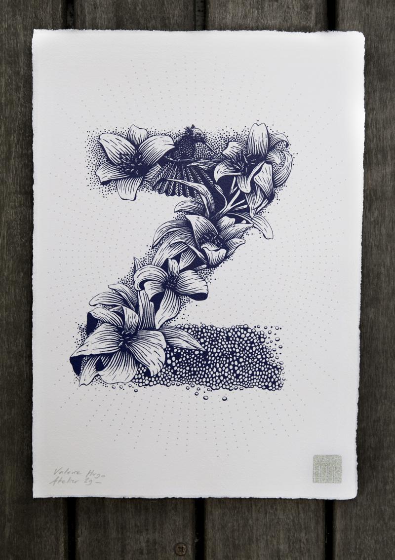 Alfabeto inspirado en la naturaleza - Z